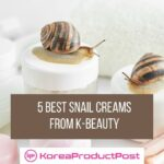5 best korean snail creams